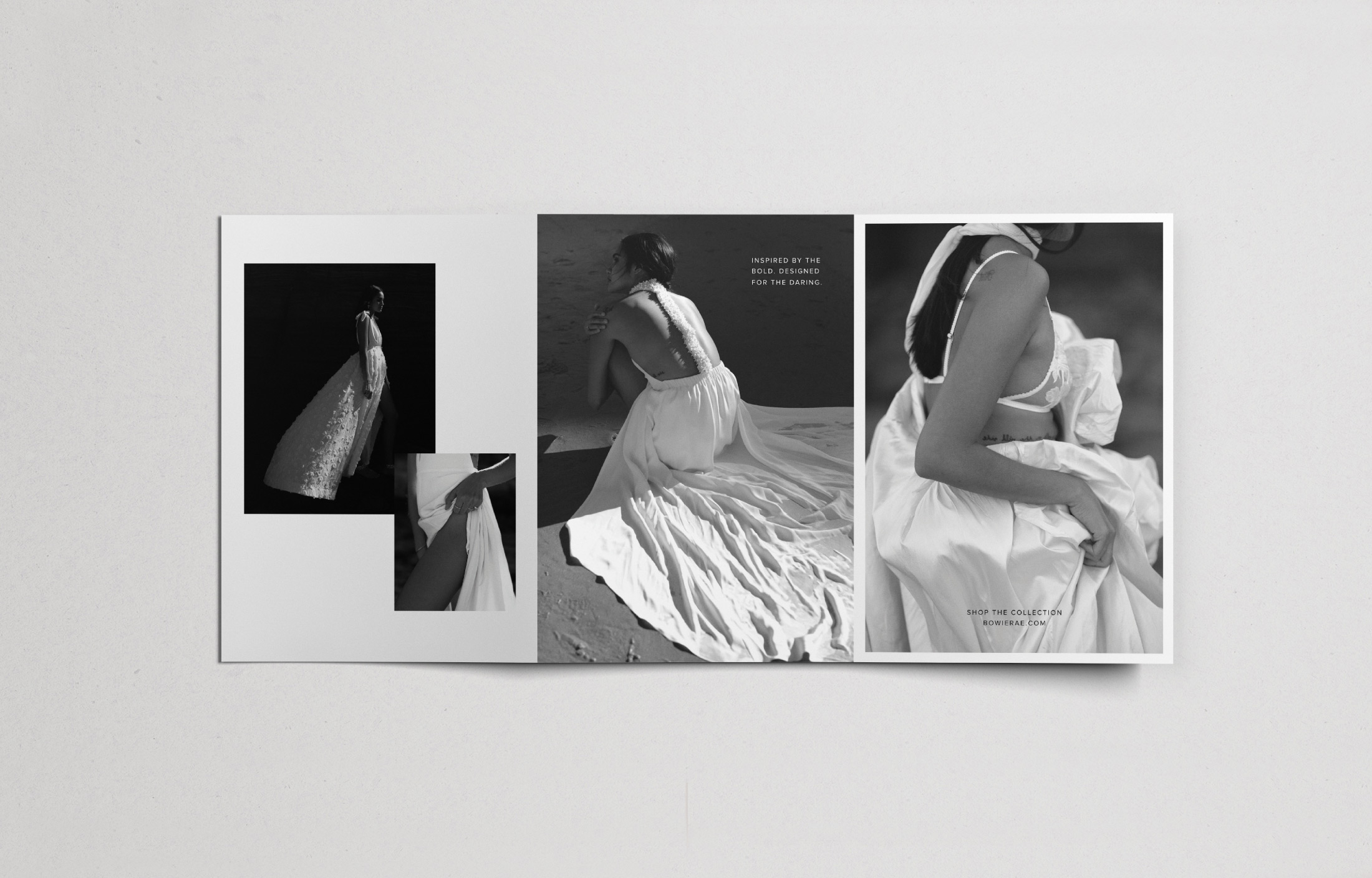 Bowie Rae Tri Fold Brochure Design