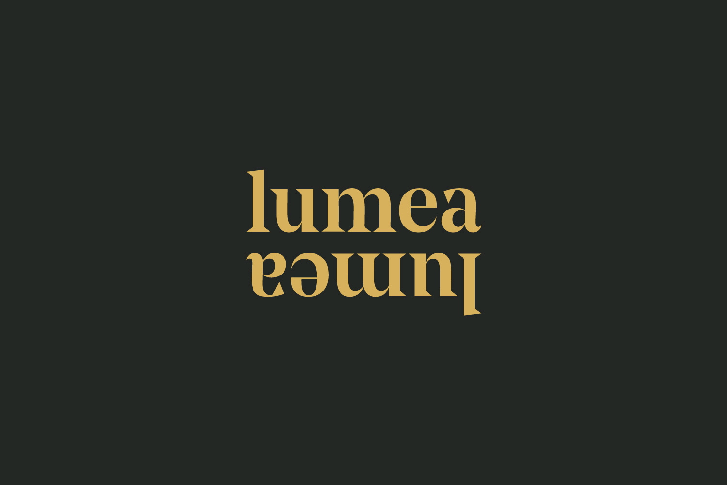 Lumea Photo branding design by Now or Never Design
