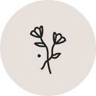 Flower illustration for Casa Bohemia